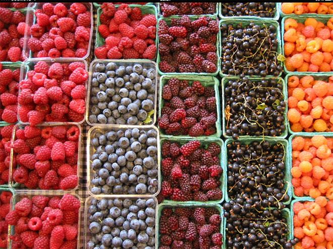 Κόκκινα φρούτα